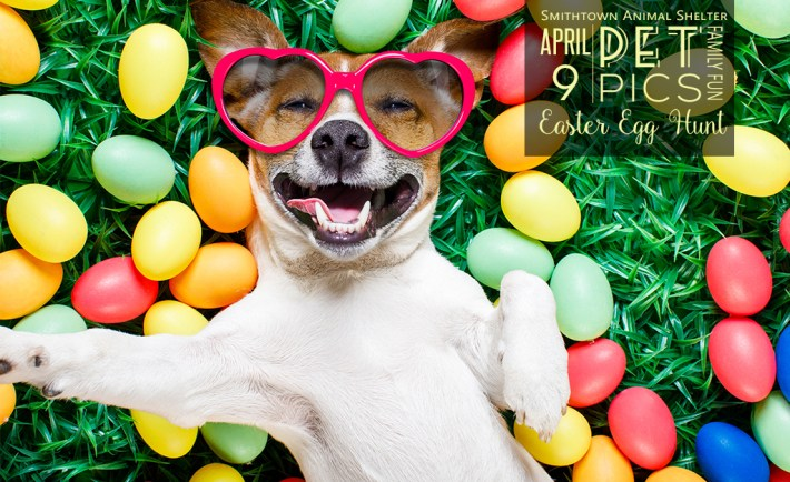 Smithtown Animal Shelter Easter Pet Photo Egg hunt