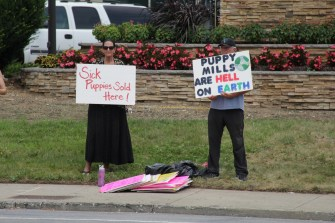 Local activists call attention to the American Dog Club store that buys dogs from puppy mills.