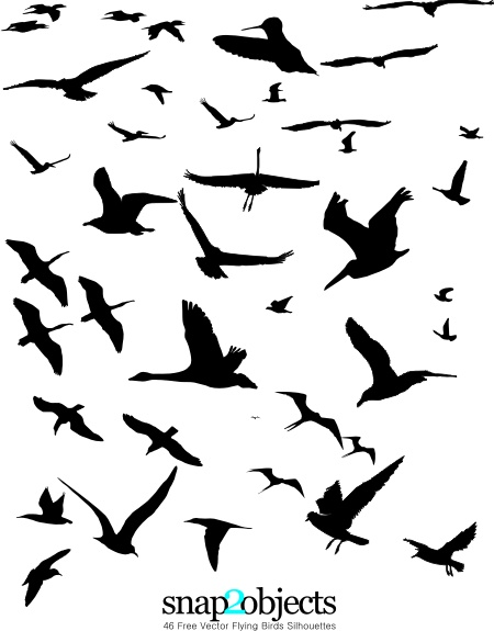 Free Vector Flying Birds Silhouettes