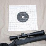 target-st3-100sightin