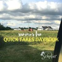 Quick Takes Daybook - Summer - Sarah Reinhard Snoring Scholar