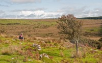 """""""A walk on Bodmin Moor, Cornwall (6), 30 Sept. 2010 - Flickr - PhillipC"""" by Phillip Capper from Wellington, New Zealand"""
