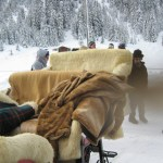 Faux fur blankets and sheepskin on sleigh