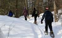 snowshowing joe's trail 2013 798