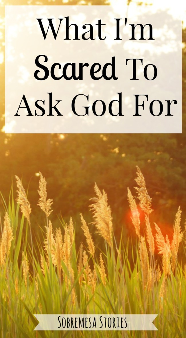 If you've ever been scared to ask God for something, you have got to check out this post!
