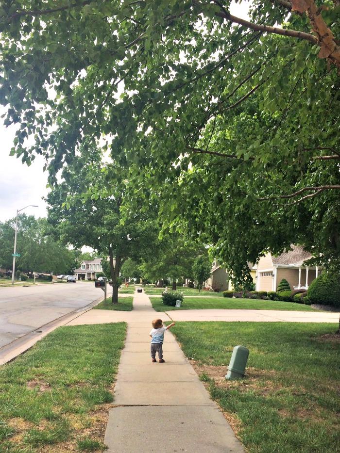 Caleb Exploring