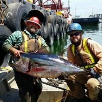 A Little Bit About That L.A. Harbor Tuna