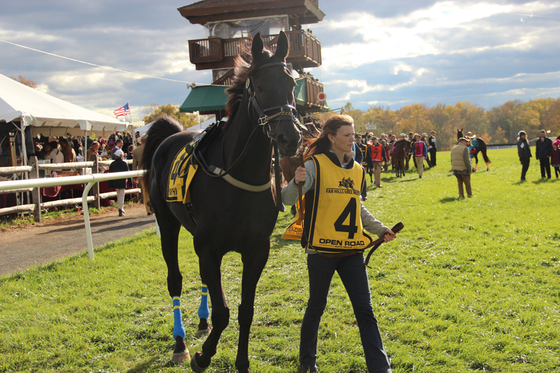 Farhills Race_horse racing_open road BMW (1)
