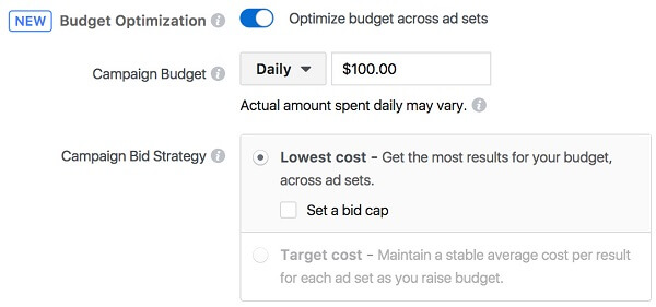 Facebook gives businesses an easier way to manage their ad budgets and ensure optimal results with the new campaign budget optimization tool.