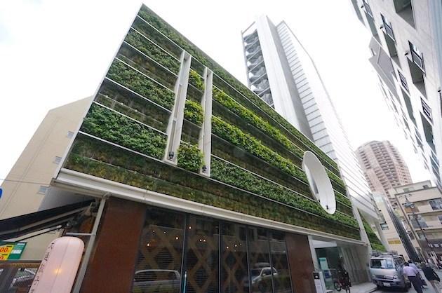 麻布十番、緑と共生、ハイグレードデザインオフィス