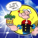 Spinach doesn't only make Popeye kick ass - it might make dirt cheap solar panels too