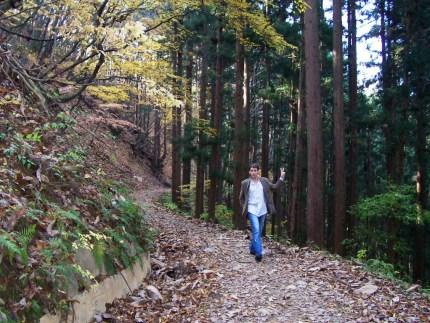 Hiking Up to Jigokudani Wild Monkey Park