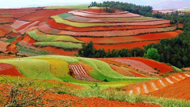 Image result for চির বসন্তের শহর চীনের কুনমিং