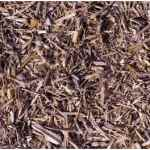 Does Mulch Attract Termites?