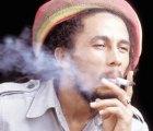 "Parásito recibe nombre en ""honor"" a Bob Marley"