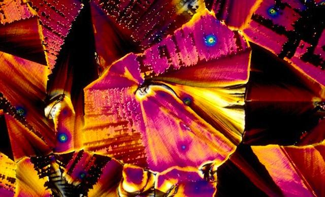 Bebidas bajo el microscopio 03
