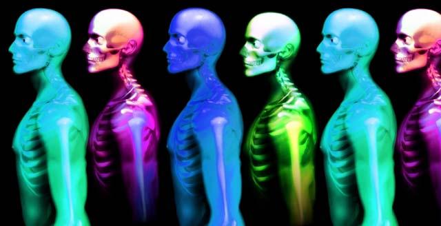 cuerpo_humano_cur_