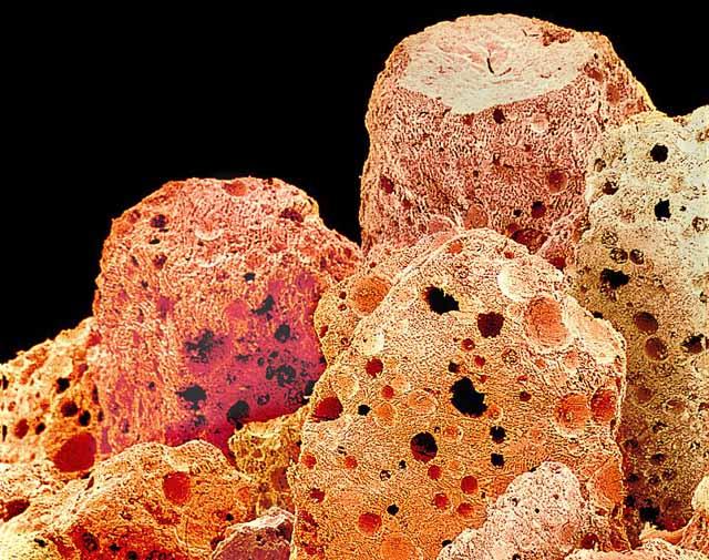 microscopio_cafe_instantaneo_