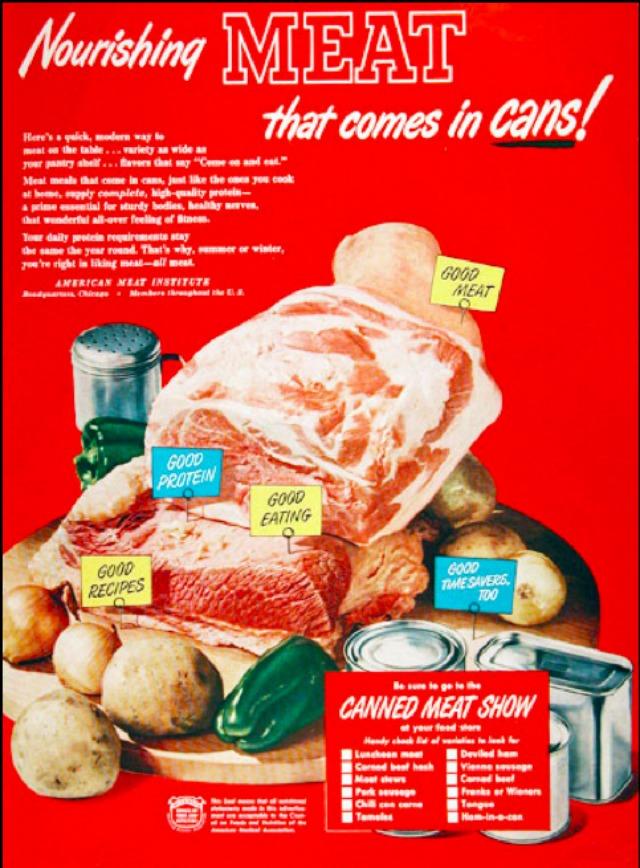 Carne 16