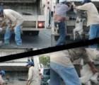 WTF!?: En Salina Cruz trituran vivos a perros callejeros, alcalde lo niega
