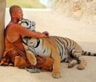 Un monje y su tigre de bengala, ¿Los verdaderos Pi y Richard Parker?