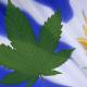 Uruguay legaliza la venta y producción de marihuana