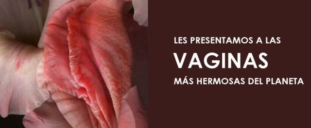 Algunos datos vaginales que probablemente no conocías