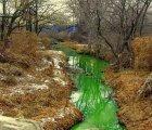 En Rusia el agua de un río se pinta de verde fluorescente