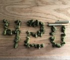 El 4/20 y la contracultura de la marihuana