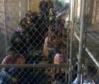 Niños migrantes mexicanos capturados ya han intentado cruzar varias veces