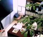 Video: Por manosear a una empleada lo separan de su cargo en Atizapán