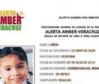 En Veracruz, desaparece niña y activan alerta AMBER... 47 días después