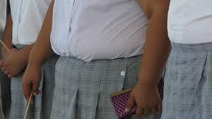 secundaria obesidad