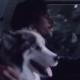 El poder de los sueños hipster en el nuevo video de The Head and the Heart