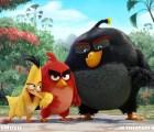 """Les presentamos la primera imagen de la película de """"Angry Birds"""""""