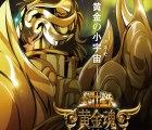 """Anuncian un nuevo anime de """"Los Caballeros del Zodiaco"""""""
