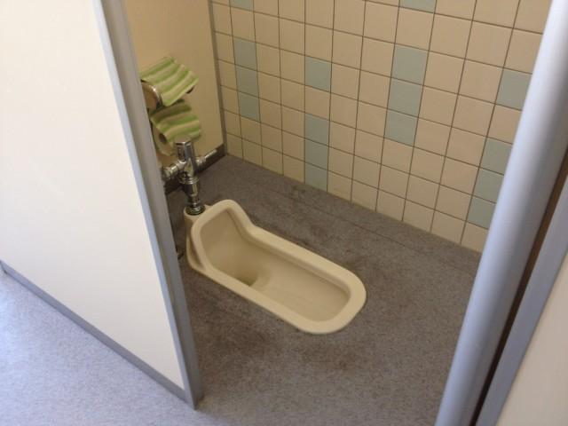 Baño Publico Mas Lujoso Del Mundo:Los baños públicos son un vórtice del infierno, dónde buscas