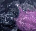 """Ve """"Family"""", el nuevo y hermoso video que Björk nos comparte"""