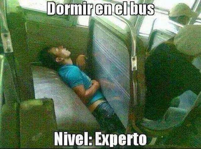 experto en dormir en los buses