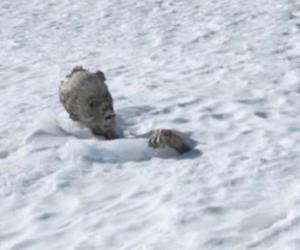 momia.picodeorizaba