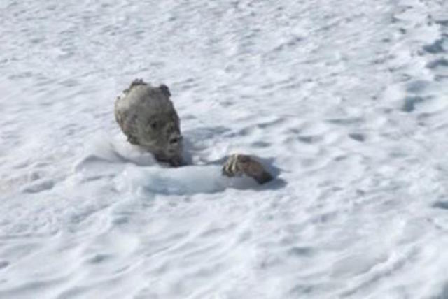 México: Encuentran momias sepultadas en la nieve