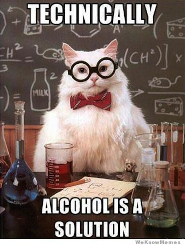 technically-alcohol-is-a-solution-chemistry-cat