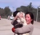 El conmovedor reencuentro de un perro y su ama, tras erupción volcánica