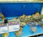 Productos extraños que venden en las tiendas Wal Mart de China