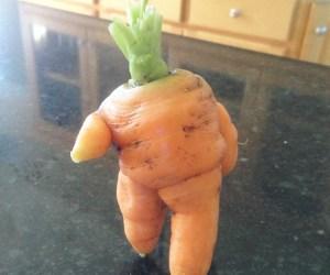 unusual-shape-fruit-vegetables-19__605