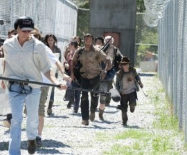 walkingdeadbs