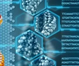 Almacentamiento biológico en ADN