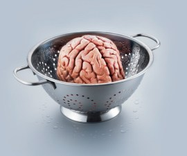 Alimentos para el cerebro00