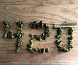 marihuana03