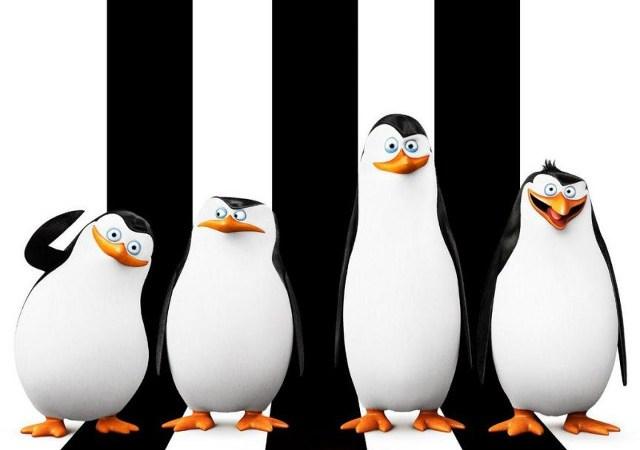 pinguinosmadagascar